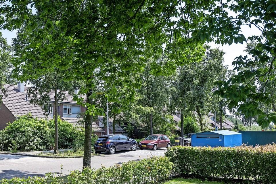De wijk in Vogelenzang met de huurhuizen van Brederode Wonen.