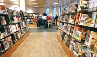 Mes moet in diensten bibliotheek Laren door verlaging subsidie