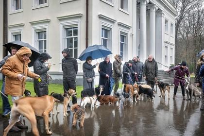 Hondenweer in Overveen tijdens protest aanlijngebod