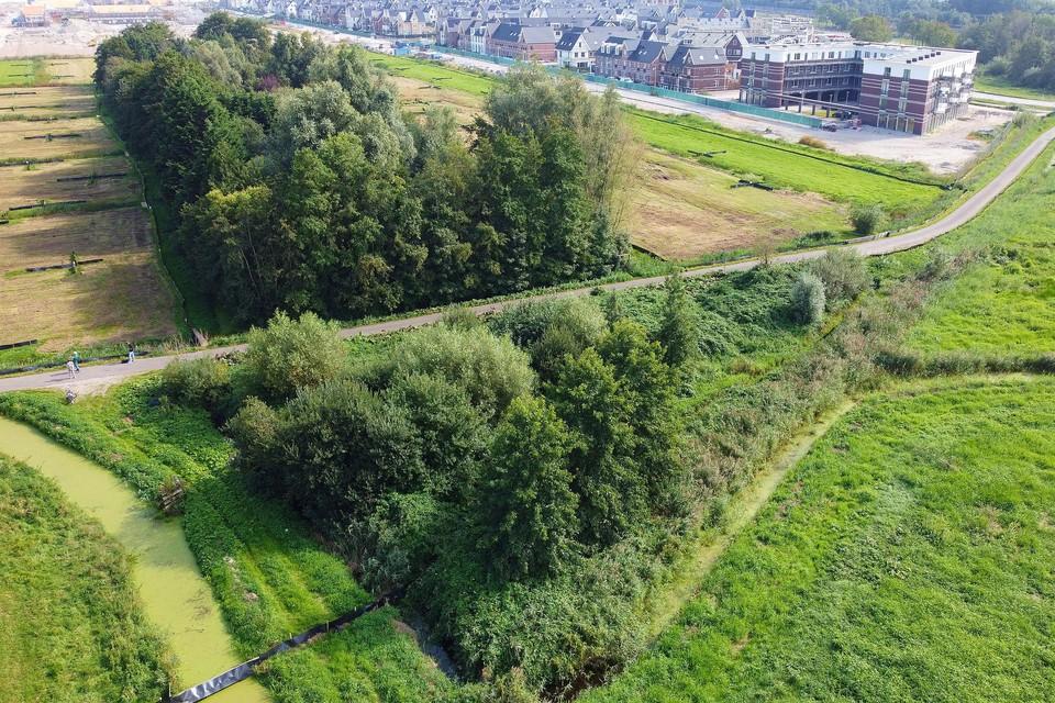 Het Weesper galgenveld lag in het driehoekje op de voorgrond. Bovenaan de oprukkende bebouwing van Weespersluis.