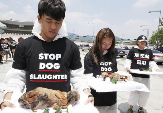 Protest in Seoul tegen eten hondenvlees