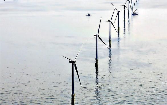 In de IJmondhaven komen meer bedrijven die te maken hebben met windenergie op zee, zo verwacht Zeehaven IJmuiden