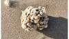 Schoonheid Noordzee in beeld gebracht: fotowedstrijd ter gelegenheid van 40-jarig bestaan Stichting De Noordzee