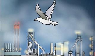 De onvoorwaardelijke liefde voor Tata komt nog maar van een kant | commentaar