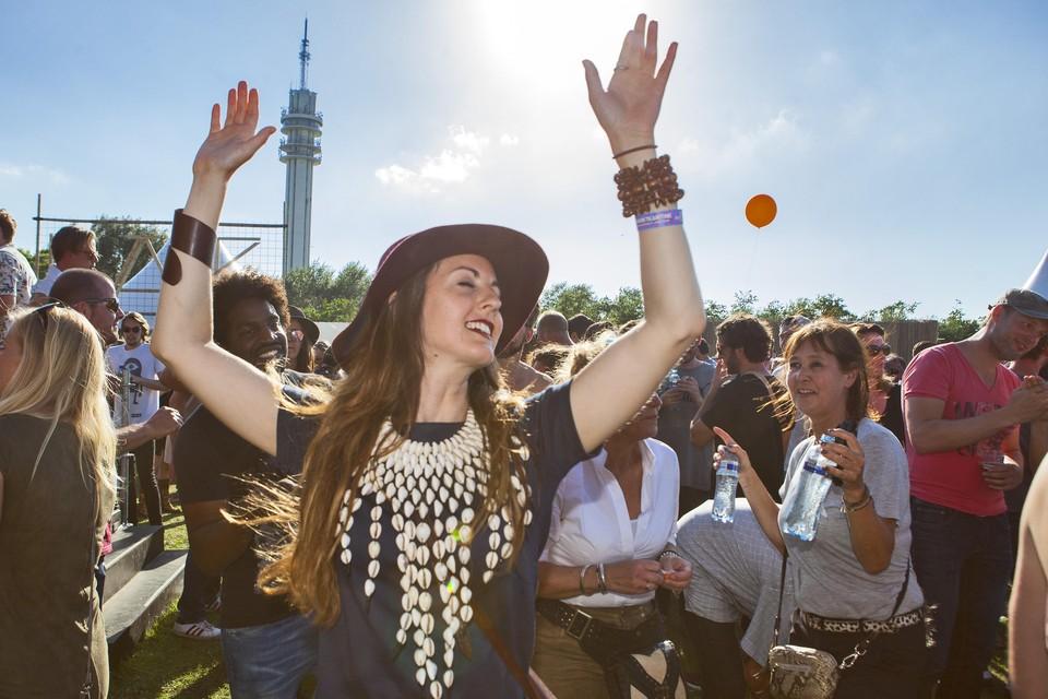 Feestende bezoekers van het Veerplas Festival in 2016
