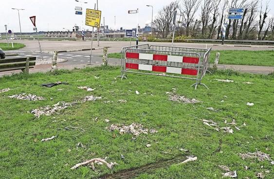 Kick Out Zwarte Piet dreigt met actie bij intocht in IJmuiden volgend jaar