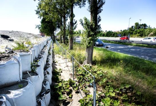 Geluidscherm moet lawaai Schipholweg in Haarlem inperken voor nieuwbouwwijk