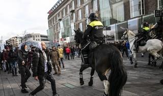 Dierenorganisaties: 'Stop met inzet van politiepaarden en -honden' [video]