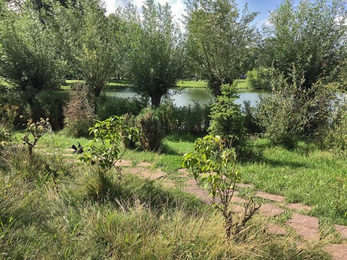 Natuur om de hoek: Beverwijkse dierentuin wil stapsteen in de natuur zijn