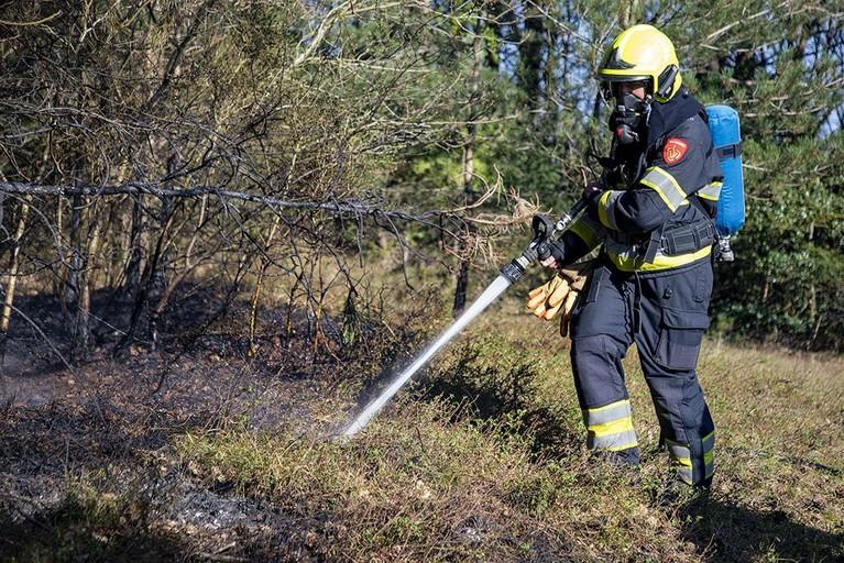 Brandweer blust brand in natuurgebied Aerdenhout, politie pakt verdachte op