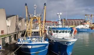 Kopzorgen bij vissers bij aanlanden van 'Britse' vis. Brexit zorgt voor papieren rompslomp. 'Vis een half uur te laat melden, mag niet'