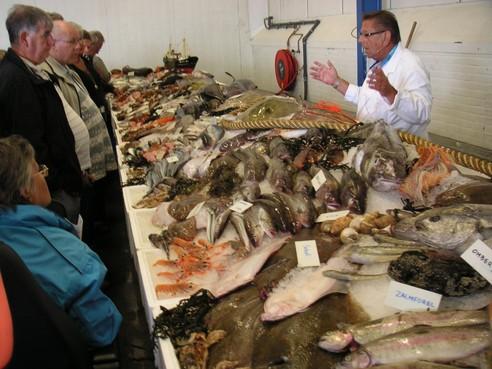 Vishandel aan horeca en buitenland stagneert, IJmuidense handelaren zoeken naar alternatieven. 'De stijging van het aantal online bestellingen maakt het weer een beetje goed