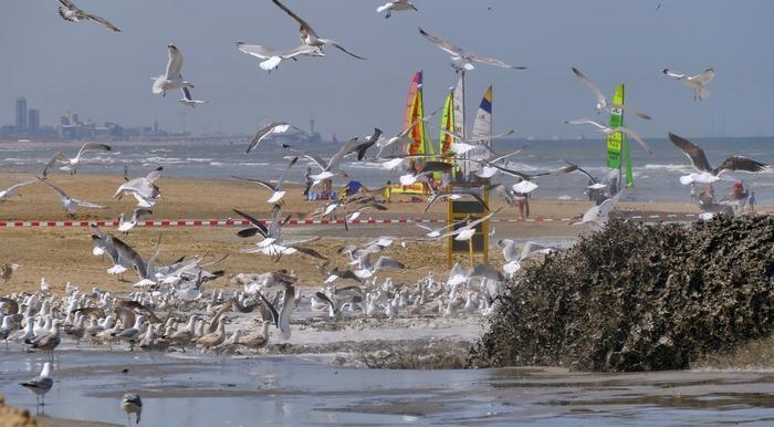 Fotowedstrijd Zomertijd: Een 'waterrijke' selectie