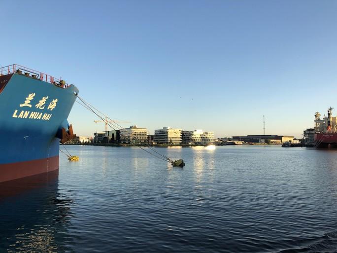 Havensafari: In Amsterdam op jacht naar The big Five