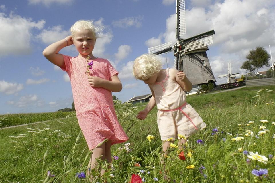 Ingestuurd door Mar Pronk uit Warmenhuizen.