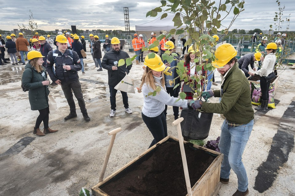 Stephanie Scholten en Ewout Meijer planten een boom.
