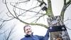 Boer Tom doet mee aan de nationale vogeltelling | column
