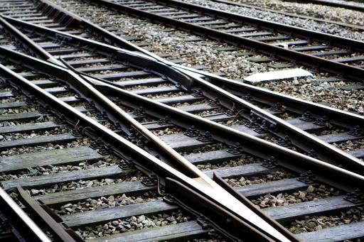 Subsidie voor meer treinen vanwege F1 verrast gemeente Bloemendaal: 'Bijzonder wrang'