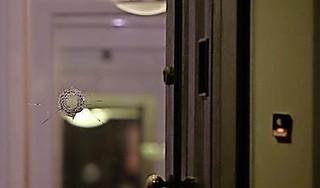 Gerechtshof heropent onderzoek naar roof duur horloge en beschieting in Heemstede, meer getuigen gehoord