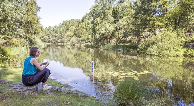 Terug naar de bron: in de Waterleidingduinen op zoek naar het belang van water