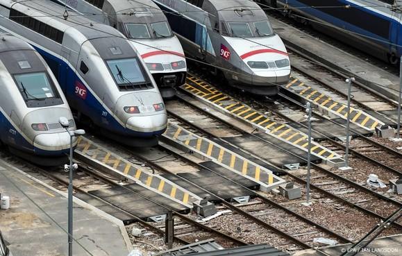 Koeien dood door botsing met TGV