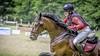 Eventing-amazone Licha Bax werkt aan internationale carrière: 'Het talent zit in het paard'