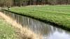 Reigers op landgoed Marquette in Heemskerk profiteren van opwellend duinwater