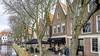 Zeven oude kastanjebomen moeten wijken voor herstel kademuren in Spaarndam; bomenridders akkoord, met pijn in het hart