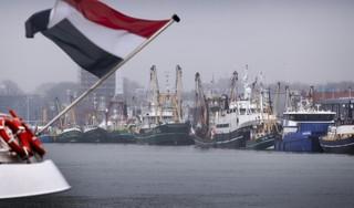 Ondernemingen in het IJmuidense havengebied werken in 'BIZ' goed samen. Ook andere bedrijven willen meedoen aan het project voor een schonere en veiligere haven