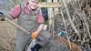 Beverwijker Bart bouwt hufterproof nestkastjes