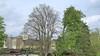 Bomen kappen in je eigen tuin zonder een vergunning. Hilversum start met de proef in het centrum. Alleen bijzondere bomen op een speciale lijst blijven heilig