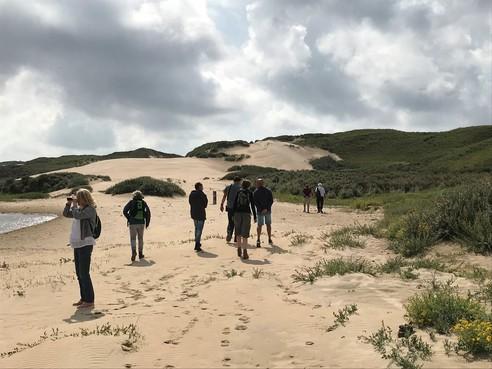 Ontdekkingstocht door de stuivende duinen van Zuid Kennemerland