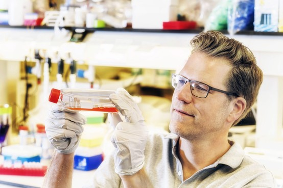 Het kraken van de menselijke code: Op zoek naar de wegenkaart van 20.000 genen
