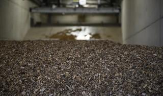 Raadsleden willen geen biomassacentrale in Haarlemmermeer